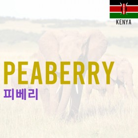 [Kenya] Peaberry