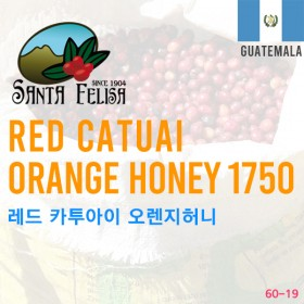 Red Catuai Orange Honey 1750(SOLD OUT)