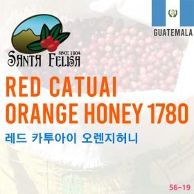 Red Catuai Orange Honey 1780 (SOLD OUT)