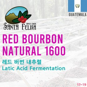 Red Bourbon Natural 1600(SOLD OUT)