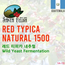 Red Typica Natural 1500