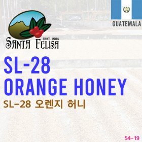 SL-28 Orange Honey(SOLD OUT)
