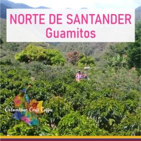 NORTE DE SANTANDER / Guamitos