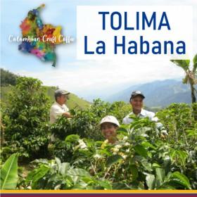 TOLIMA / La Habana (SOLD OUT)